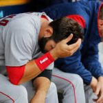 2017 Red Sox Report Card