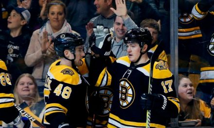 Bruins Prospects to Watch out For