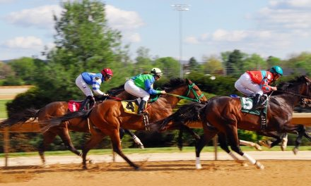 Here's What You Need to Know About Horse Racing Sport
