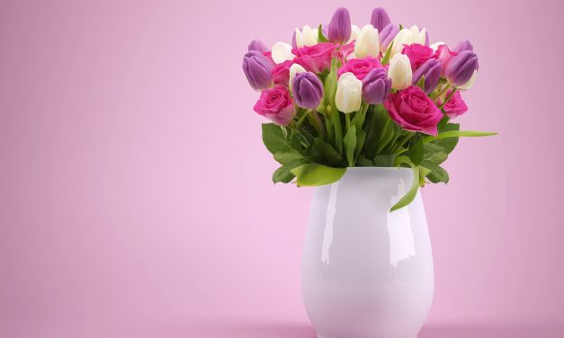 Best Flowers to Say Sorry