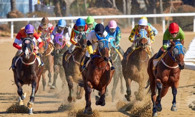 The 6 Profound Reasons To Watch Breeders Cup And Embrace Horse Racing As A Sport