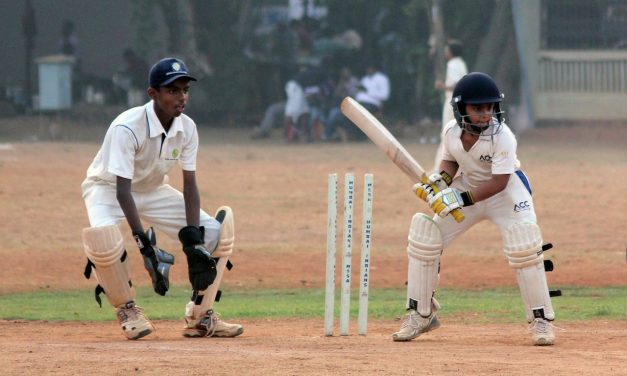 How to play cricket betting online? Want to know more