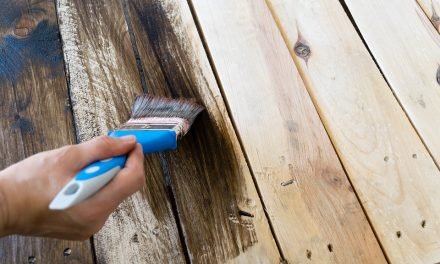 Best Choice Of Paint Options For Wood