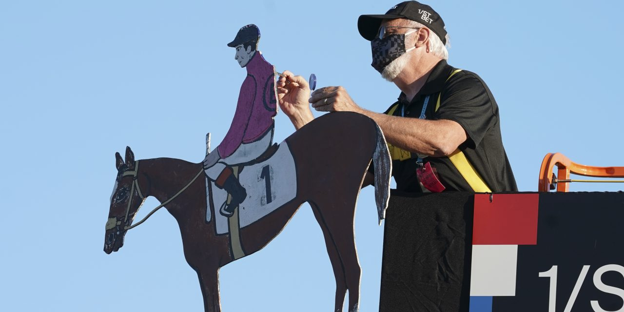 Why Bet on A Horse Race?