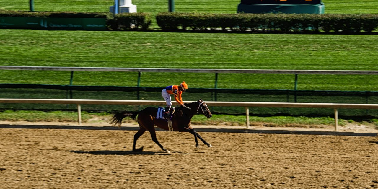 Bet on Horses: Tips How To Wager For The Upcoming Kentucky Derby